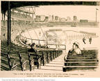 Cartoonist Ohio State Cartoon Library & Museum  Ohio State Cartoon Library & Museum 1900-00-00 baseball fan