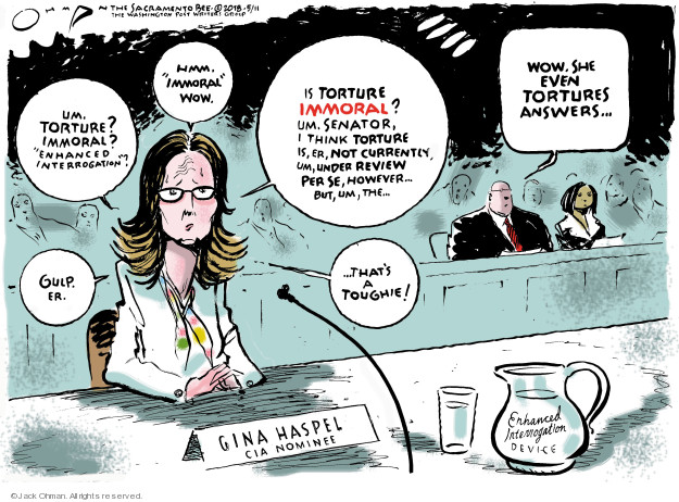 Um. Torture? Immoral? Enhanced interrogation? Gulp. Er. Hmm. Immoral. Wow. Is torture immoral? Um. Senator, I think torture is, er, not currently, um, under review per se, however ... but, um, the ... Wow. She even tortures answers ... Thats a toughie! Gina Haspel. CIA Nominee. Enhanced Interrogation Device.