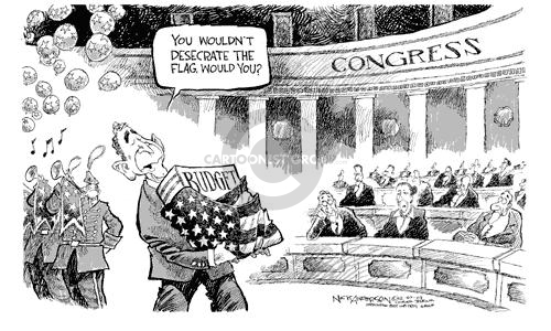 You wouldnt desecrate the flag, would you?  Budget.  Congress.