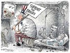Cartoonist Nick Anderson  Nick Anderson's Editorial Cartoons 2007-02-22 veteran