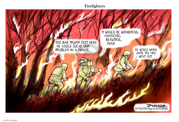 the forest fire comics and cartoons the cartoonist group