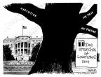 Cartoonist John Deering  John Deering's Editorial Cartoons 2014-01-28 separation of powers