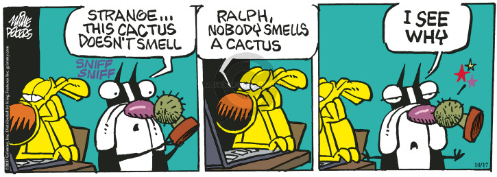 Strange … this cactus doesnt smell. Sniff sniff. Ralph, nobody smells a cactus. I see why.