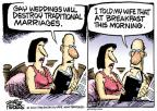 Cartoonist Mike Peters  Mike Peters' Editorial Cartoons 2010-08-06 traditional marriage