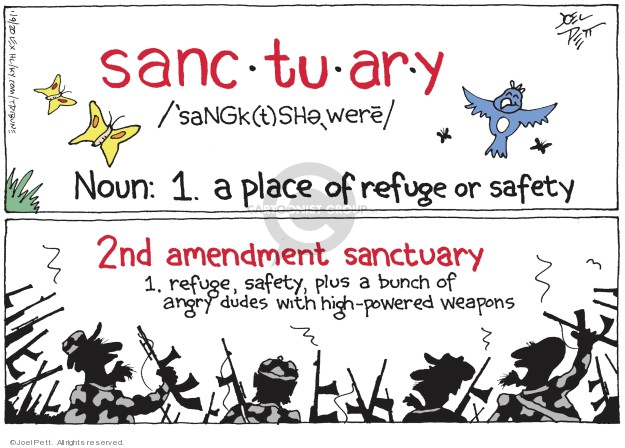 Sanc-tu-ar-y Noun: 1. a place of refuge or safety. 2nd amendment sanctuary. 1. Refuge, safety, plus a bunch of angry dudes with high-powered weapons.