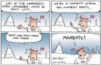 Cartoonist Joel Pett  Joel Pett's Editorial Cartoons 2011-01-03 2010 election