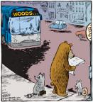 Cartoonist Dave Coverly  Speed Bump 2011-02-07 bear