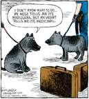 Cartoonist Dave Coverly  Speed Bump 2008-09-01 dog