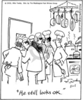 Cartoonist Mike Twohy  That's Life 2005-11-01 recipe